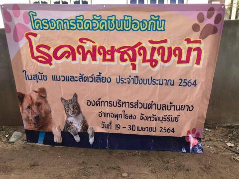 โครงการฉีดวัคซีนป้องกันโรคพิษสุนัขบ้าในสุนัขและแมวและสัตว์เลี้ยง
